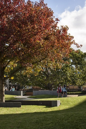 Semi-circular seating around an autumnal tree provides a destination to aim for in the middle of the park.