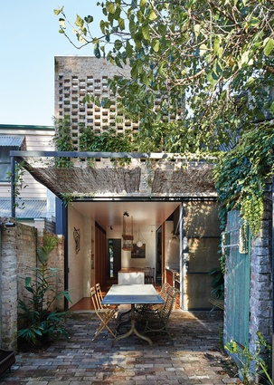 Waterloo House by Anthony Gill Architects with Budwise Garden Design.