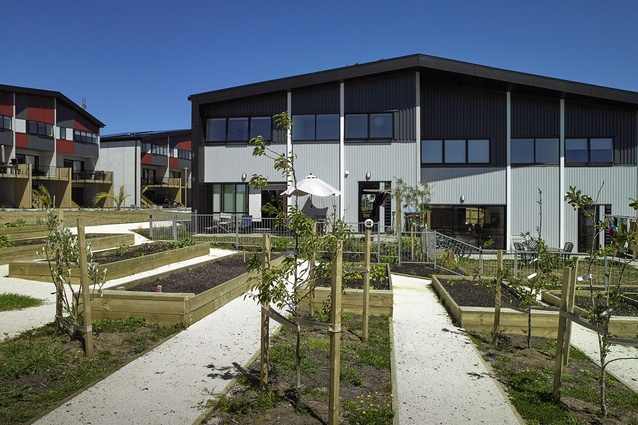 Housing – Multi Unit category finalist: Kāinga Tuatahi, Auckland by Stevens Lawson Architects.