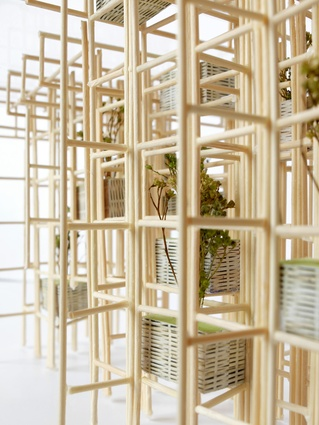 A scale model of the pavilion highlights how vegetation is incorporated into the bamboo grid in a contained and curated manner.