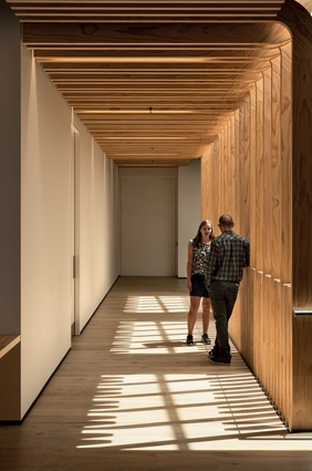 The elegant timber fins lead staff members along the mezzanine walkway to the innovative full-height 'pivot' door to their offices.