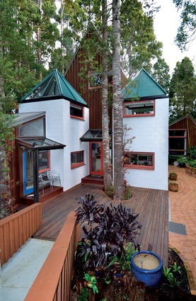 Family house in amongst kauri trees in Birkenhead, Auckland.
